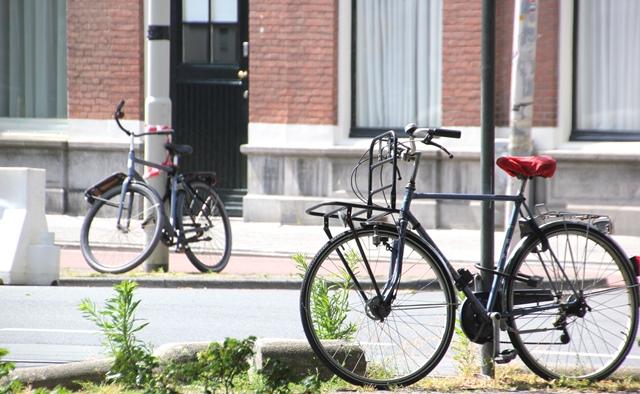 biciclete_urbane_batesaua_citybike_oras