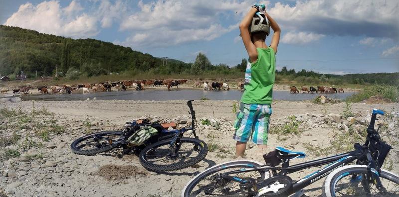 cicloturism bate saua excursii copii familii bassen pension bazna ardeal