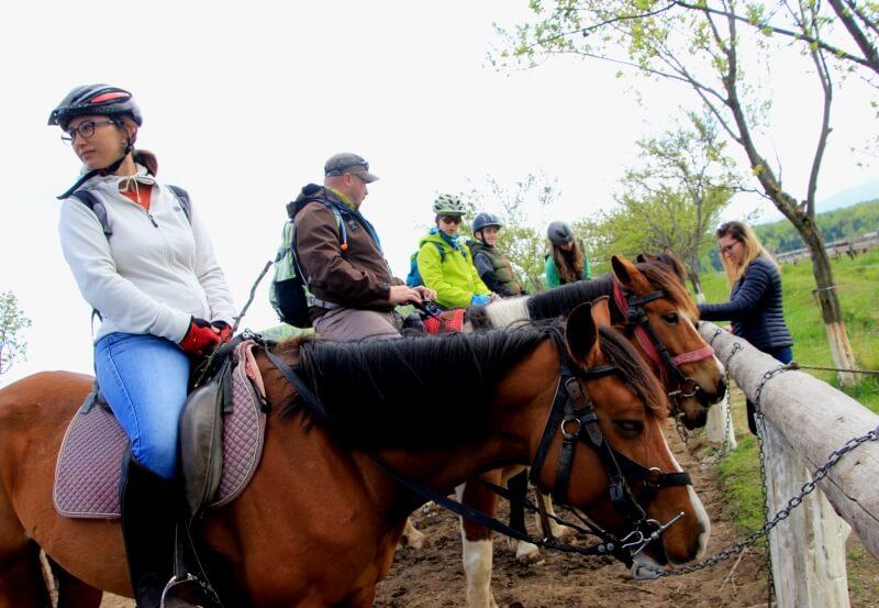 plimbari cu caii tabere copii scoala batesaua