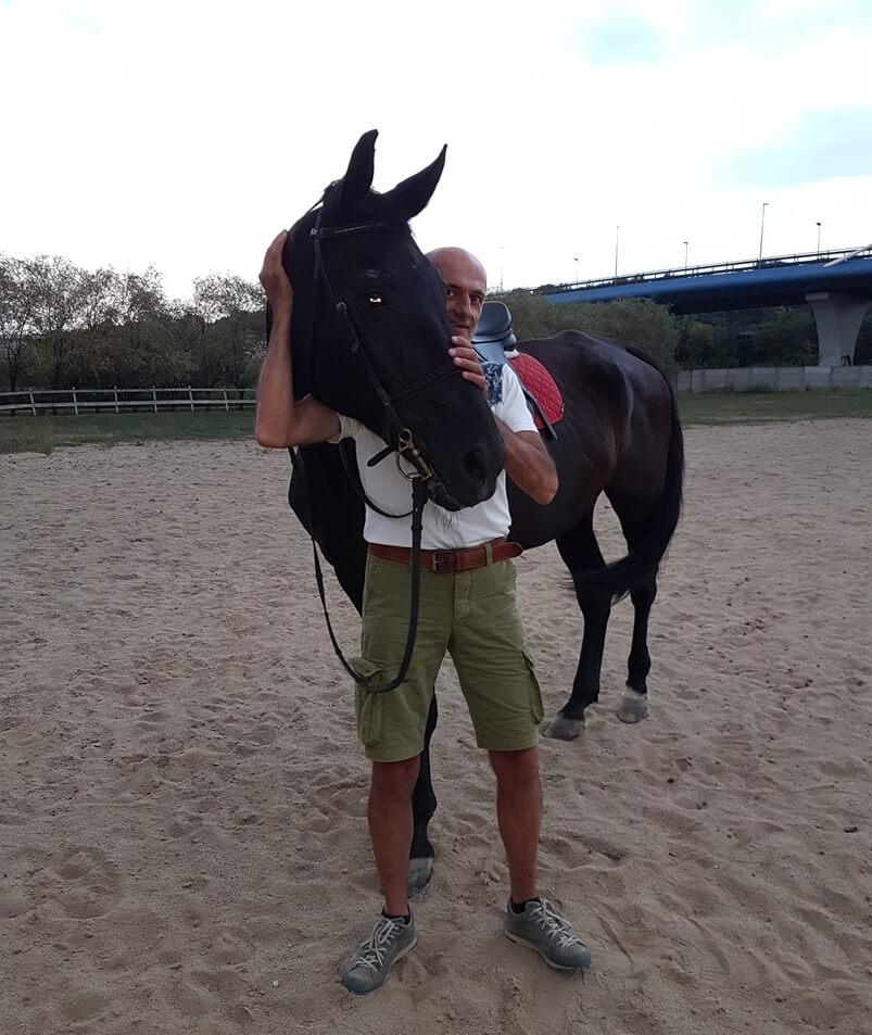 dresajul calului si dezvoltare personala a calaretului