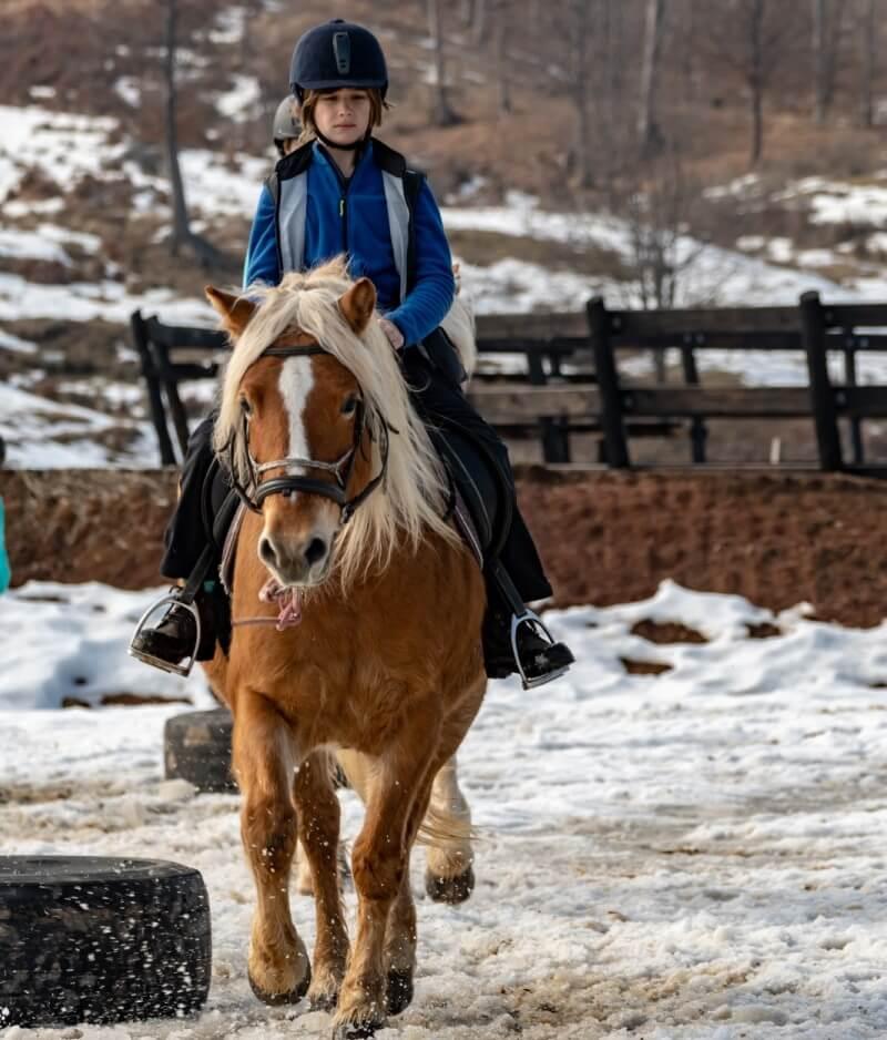 excursie calare iarna la Potcoava