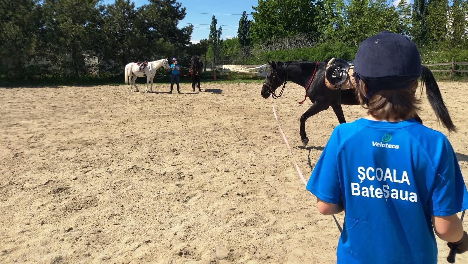 Lonjarea calului