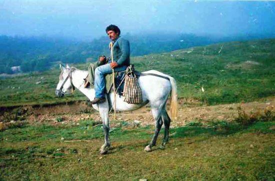 Pindo-Pony
