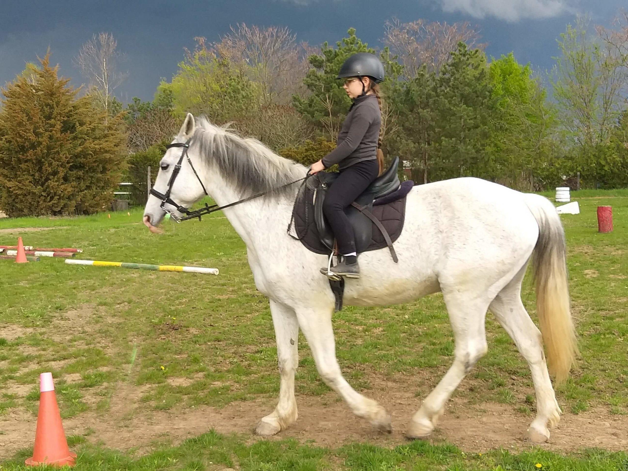 working equitation la scoala batesaua